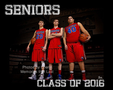a_Seniors Collage