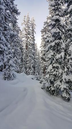 2016-01-Snowboarding