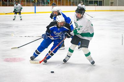 LDC Boys Hockey vs Becker-Big Lake
