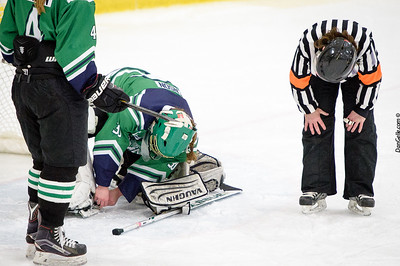 LDC Girls Hockey vs Henry Sibley