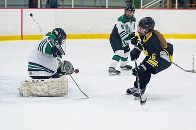 LDC vs Hutchinson Girls Hockey