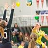 Volleyball Senior NIght-012