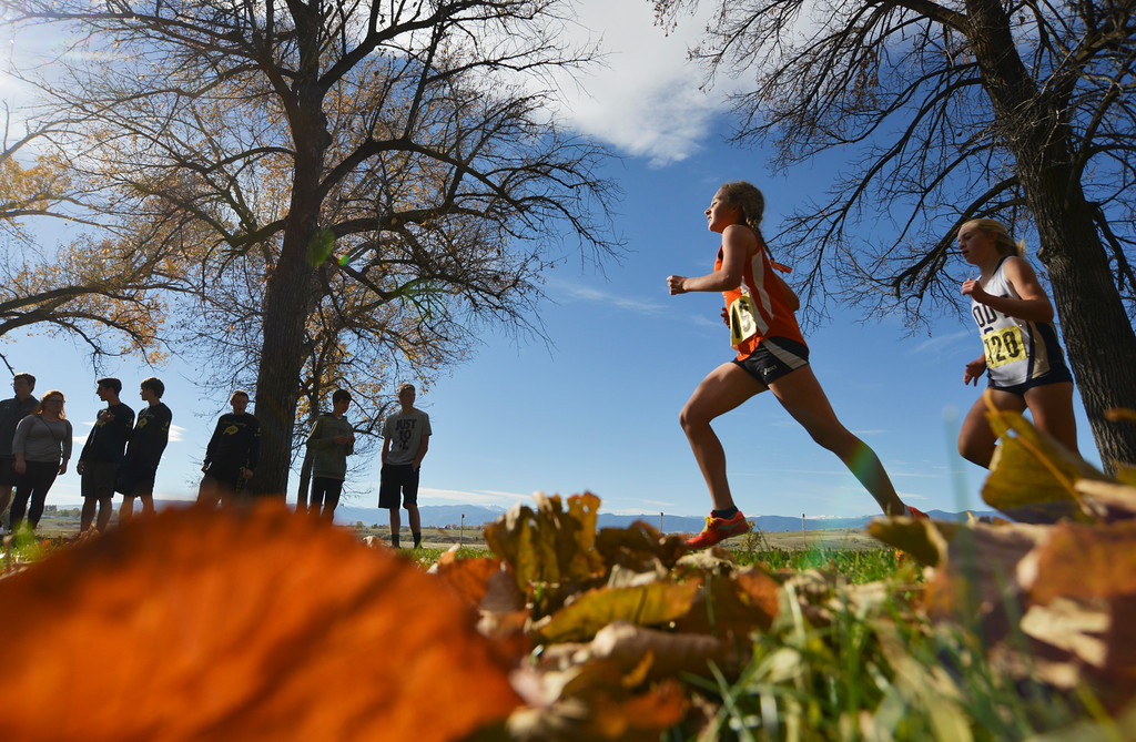 Justin Sheely | The Sheridan Press<br /> Class 3A girls run under a row of trees during the State Cross-Country Championship Saturday at the Veterans Affairs Medical Campus in Sheridan.