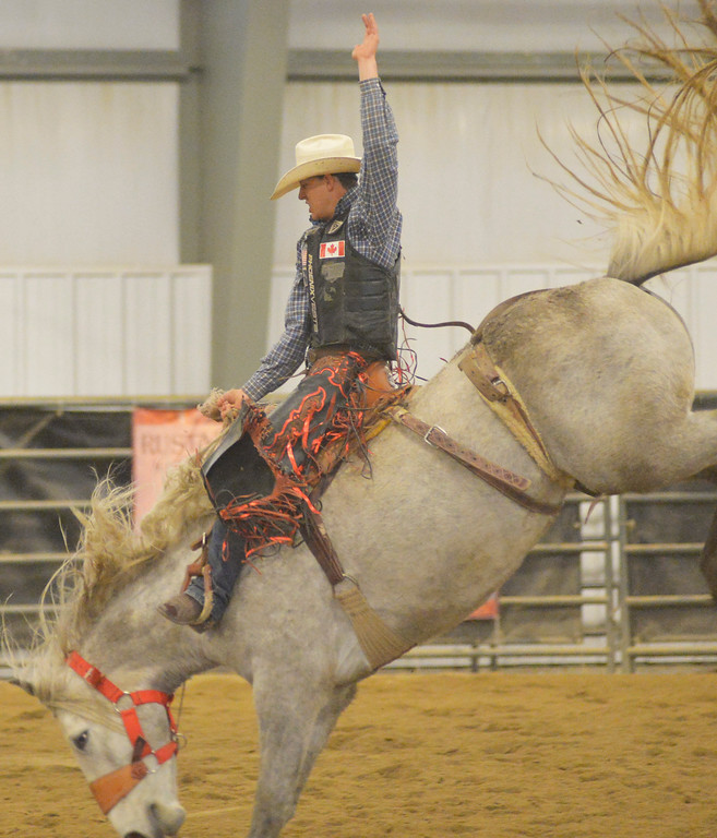 Justin Sheely | The Sheridan Press<br /> Sheridan College Rodeo Athlete Zeke Thurston rides saddle bronc during the last practice week of the season Tuesday at the Sheridan College AgriPark. Sheridan College rodeo athletes will be heading to their last rodeo this weekend in Laramie.