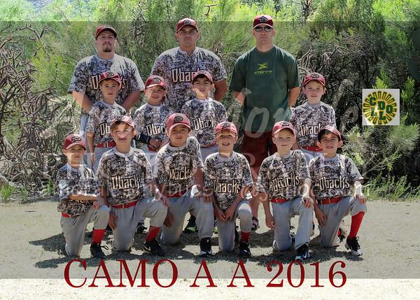 2016 CDO CAMO AA