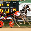 Don Knight |  The Herald Bulletin<br /> Montrell Teague wins the Dan Patch driving Wiggle It Jiggle It at Hoosier Park on Friday.