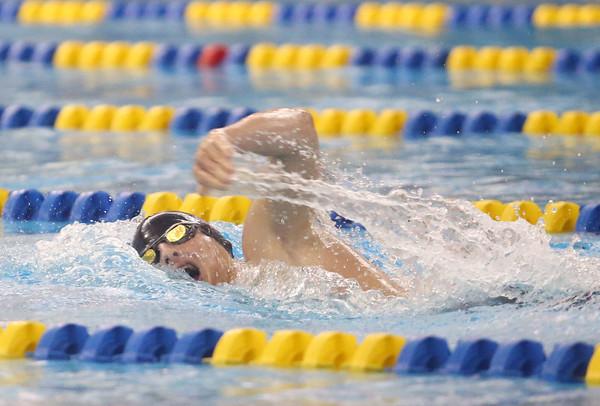 2-18-16<br /> Sectional swimming prelims<br /> Northwestern's Gray Longshore in the 200 Y Freestyle<br /> Kelly Lafferty Gerber | Kokomo Tribune