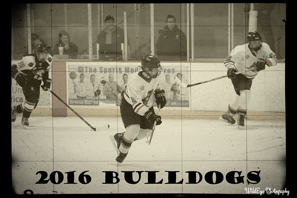 2016 HHS Hockey