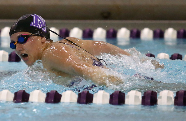 11-17-16<br /> Northwestern girls swimming<br /> Lexie Parrott in the 100 Yard Butterfly<br /> Kelly Lafferty Gerber   Kokomo Tribune