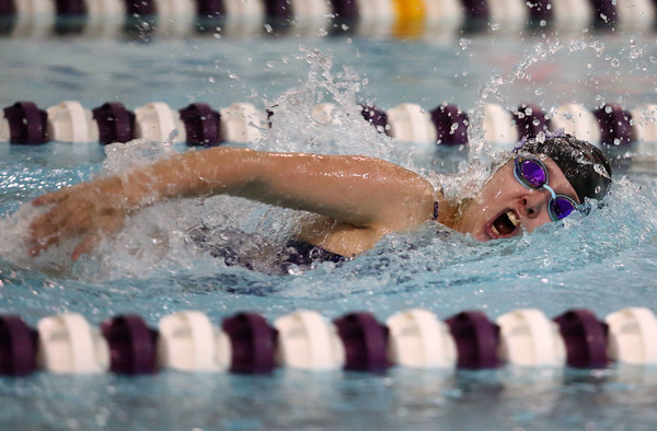 11-17-16<br /> Northwestern girls swimming<br /> Hallie Roth in the 50 Yard Freestyle<br /> Kelly Lafferty Gerber   Kokomo Tribune