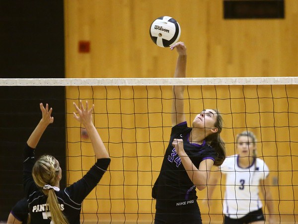 9-27-16<br /> Western vs Northwestern volleyball<br /> Northwestern's Madison Layden<br /> Kelly Lafferty Gerber | Kokomo Tribune