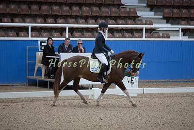 Horseland Final