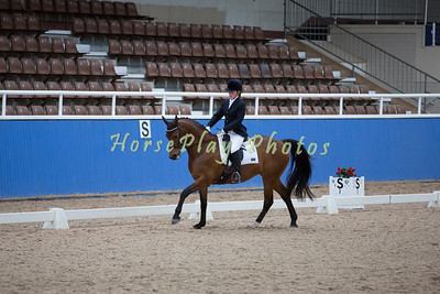 Master Series Final Para Equestrian