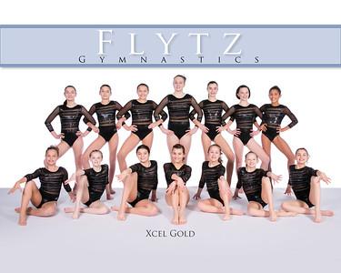 FLYTZ Xcel Gold