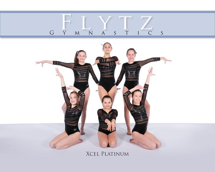 Xcel Platinum