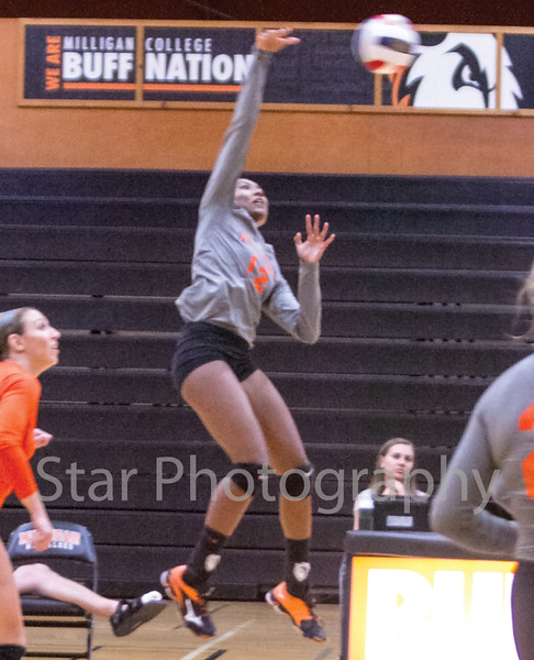 Star Photo/Larry N. Souders<br /> The Lady Buff's Marissa Langford (12) elevates for a kill in game two of Milligan College's match against the Lady Bears from Truett-McConnell.