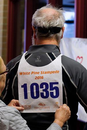WHITE PINE STAMPEDE