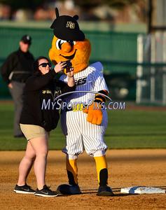 4/23/2016 Mike Orazzi | Staff The New Britain Bees mascot Saturday night.