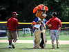 8/13/2016 Mike Orazzi | Staff<br /> Members of the grounds crew dance with Dugout  during the New England Final at the Eastern Regional Little League Tournament in Bristol Saturday afternoon.