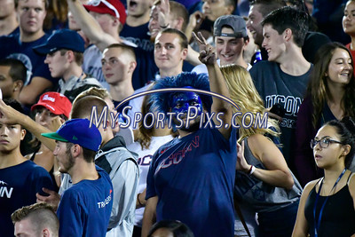 9/1/2016 Mike Orazzi | Staff UConn fans during the season opener with the Maine Black Bears at Rentschler Field in East Hartford Thursday night.