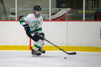 LDC Boys Hockey vs Willmar