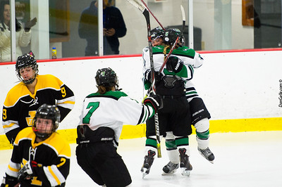 LDC Girls Hockey vs Hutchinson