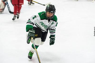 LDC Girls Hockey vs Willmar