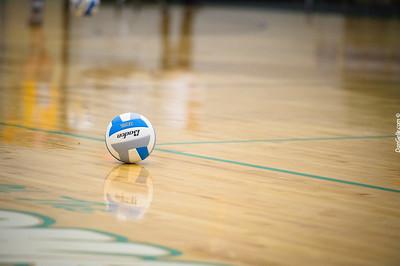 Dargon Volleyball vs Renville West