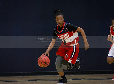 DCSAA Girls All Star Game