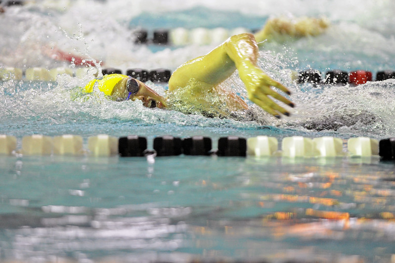 Piper Carroll swims in the 100-yard freestyle during the state meet on Saturday, Nov. 4 at the Campbell County Aquatic Center. Mike Pruden | The Sheridan Press
