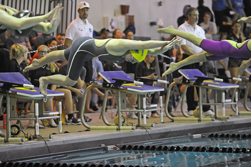 Taylor Baldacci dives off the block to start the 100-yard butterfly race during the state swim meet on Saturday, Nov. 4 at the Campbell County Aquatic Center. Mike Pruden | The Sheridan Press