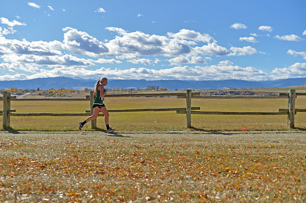 2017 State Cross-Country Meet