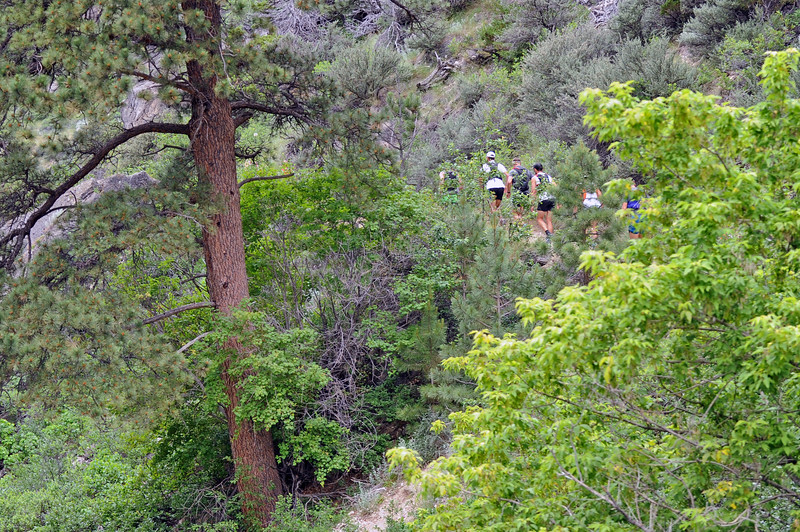 Runners climb the trail in Bighorn Mountain Wild and Scenic Trail Run 100-mile race on Friday, June 16 in Tongue River Canyon. Mike Pruden   The Sheridan Press