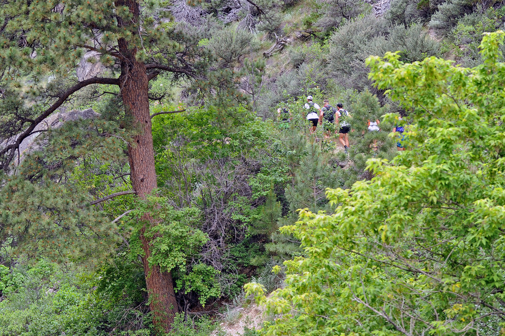 Runners climb the trail in Bighorn Mountain Wild and Scenic Trail Run 100-mile race on Friday, June 16 in Tongue River Canyon. Mike Pruden | The Sheridan Press