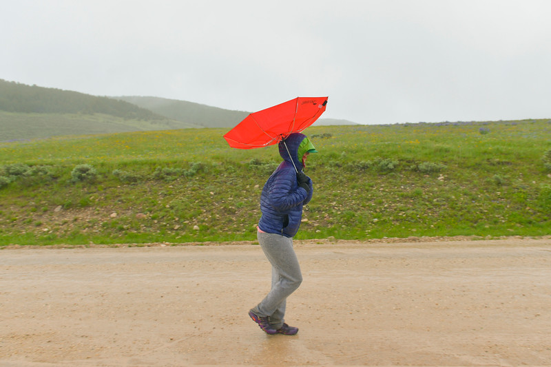 Justin Sheely   The Sheridan Press<br /> A woman walks against the wind and rain prior to the start of the 32-mile race during the 25th annual Bighorn Mountain Wild and Scenic Trail Run Saturday at the Dry Fork aid station. Cold rain and wind brought a soggy start to Saturday's events.