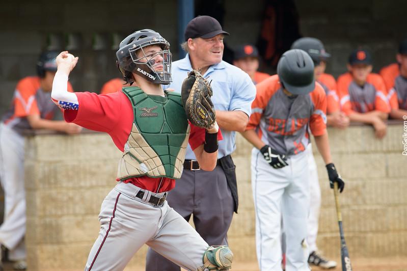 Litchfield VFW Baseball