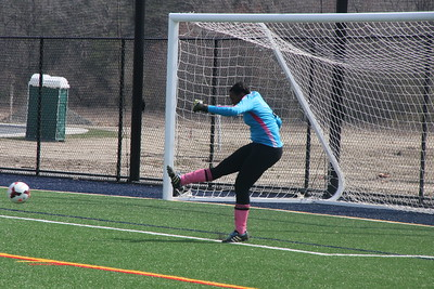 2017 Brandywine Girls Soccer