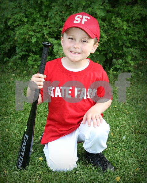 2017 COUDY TEE-BALL- STATE FARM