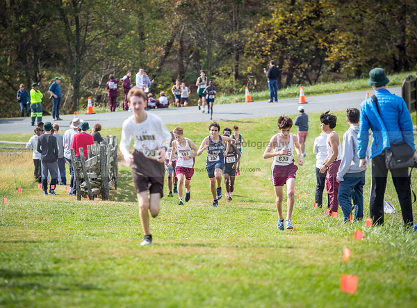 2017 IAC, ISL, and MAC Cross Country Championships