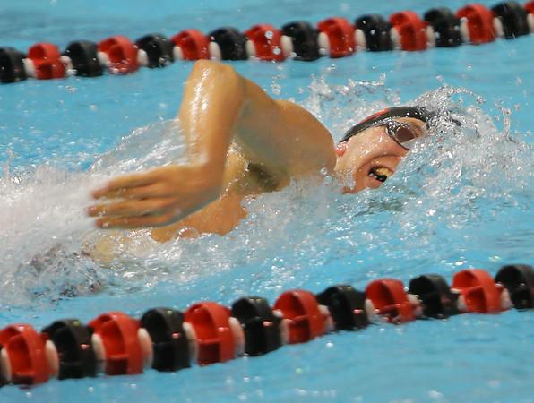 Swim WHSvsNHS