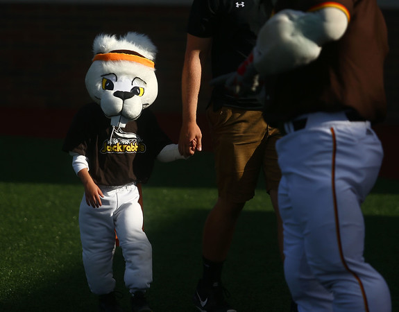 6-6-17<br /> Jackrabbits vs Aviators<br /> A mini-Jax made his debut at the Jackrabbits game.<br /> Kelly Lafferty Gerber | Kokomo Tribune