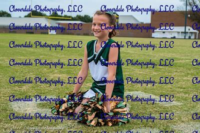 NC Senior Cheerleaders 2017-3958