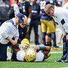 CHAD WEAVER | THE GOSHEN NEWS<br /> Notre Dame trainers attend to freshman offensive lineman Aaron Banks as head coach Brian Kelly looks on during the first half of Saturday's Blue-Gold game at Notre Dame Stadium.
