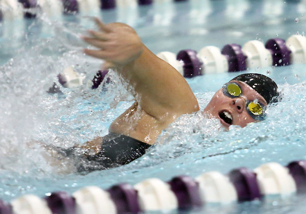 11-30-17<br /> Northwestern vs Logansport swimming<br /> Kayla Campbell in the girls 50 Yard Freestyle.<br /> Kelly Lafferty Gerber | Kokomo Tribune