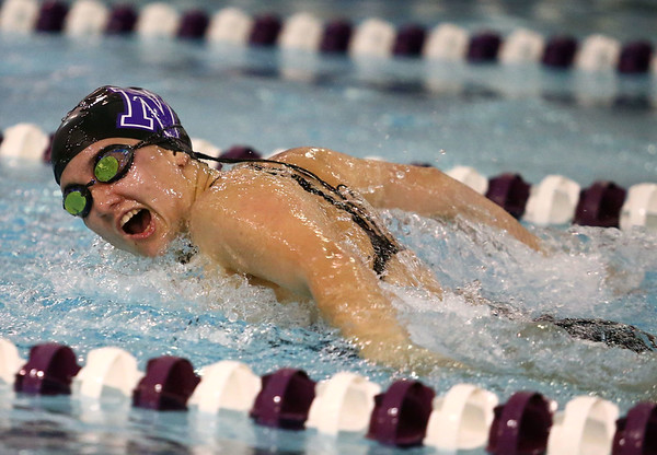 11-30-17<br /> Northwestern vs Logansport swimming<br /> Grace Bourff in the girls 100 Yard Butterfly.<br /> Kelly Lafferty Gerber | Kokomo Tribune