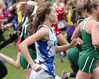 2017 Section 7 Cross Country Meet