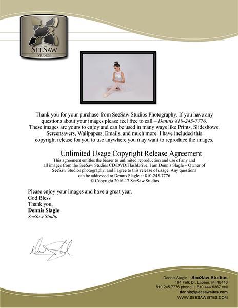 SeeSaw Copyright agreement 17