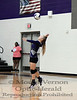 Mount Vernon Varsity Lady Tigers vs Avery Lady Bulldogs Volleyball game photos