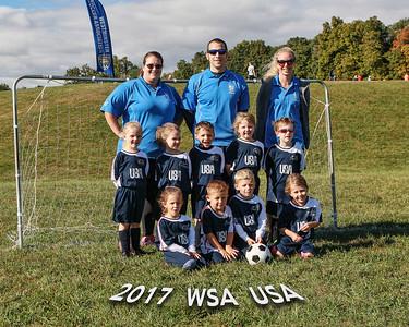 2017 - WSA USA