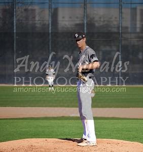 2017 baseball Cowboy Up